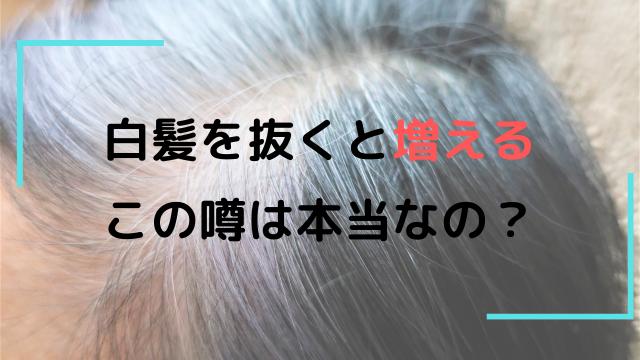 白髪を抜くと増えるって本当? 実際のところを調べてみました